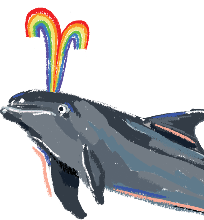 Image of a dolphin.