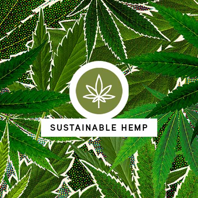 Sustainable Hemp